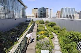 Rooftop Garden with Putting Green